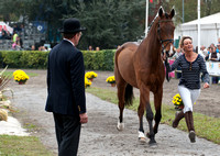 Four Star TROT UP