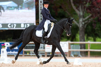 CCI Two Star Dressage