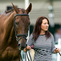 Alex Postolowsky (GBR) and Islanmore Ginger at the 1st horse inspection