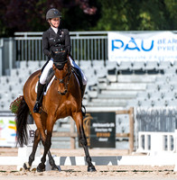 Two Star Dressage