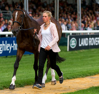 Izzy Taylor (GBR) and KBIS Briarlands Matilda at the 1st horse inspection
