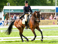 Bramham CCI Three Star Dressage